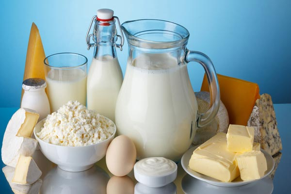 fibromyalgia and dairy products